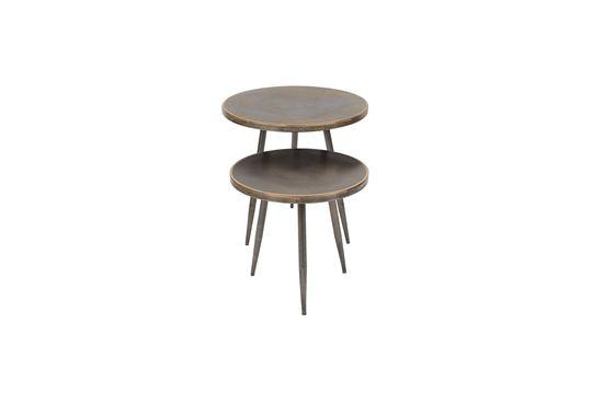 Serie di 2 Flaxieu tavolini in metallo spazzolato Foto ritagliata